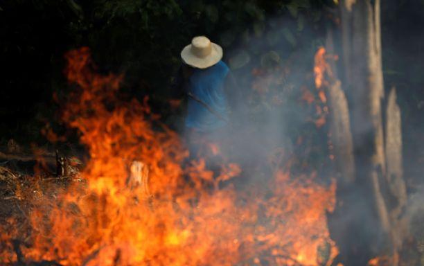 Mies työskenteli palavassa sademetsässä Irandubassa, Amazonasin osavaltiossa.