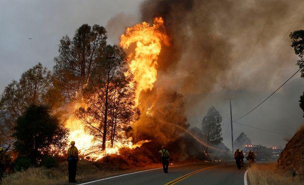 Yksi palomies kuoli tällä viikolla Kaliforniassa riehuneiden maastopalojen sammutustöissä.