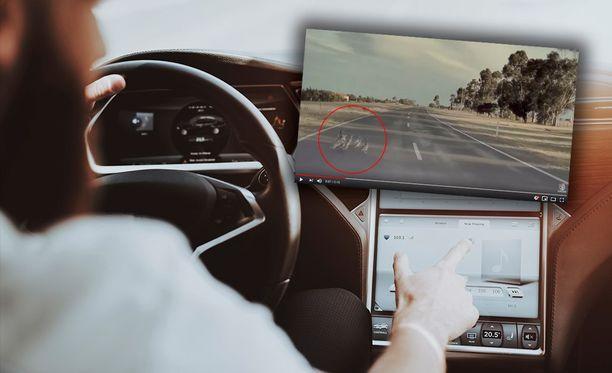 Autopilot Mode -järjestelmä näki ankat kuskia nopeammin ja väisti.