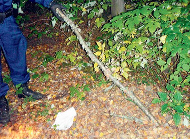 Noin 1,5 metriä pitkä oksa oli piilotettu pyörätielle lehtikasan alle.