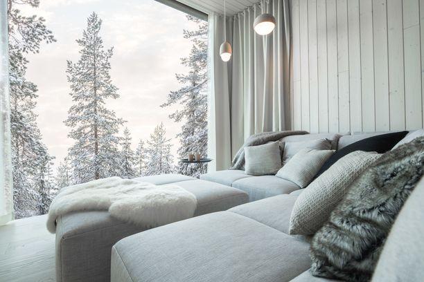 Käpylehmistä näkee upeasti luontoon. Kuva Arctic Scene -sviitistä.