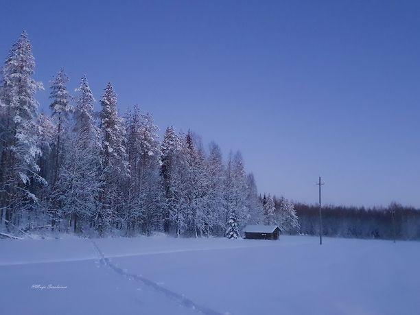 Tämä sininen hetki kuvattiin Nurmeksessa 4.1.2021.