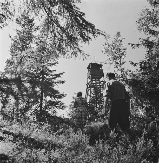 1950-luvulla Pisalla oli tämän näköinen torni. Nykyinen on uudempi.