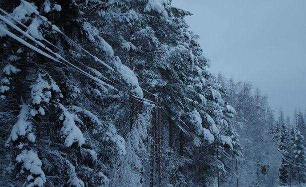Suomen yli pyyhkäisi tiistaina sankka lumimyräkkä.