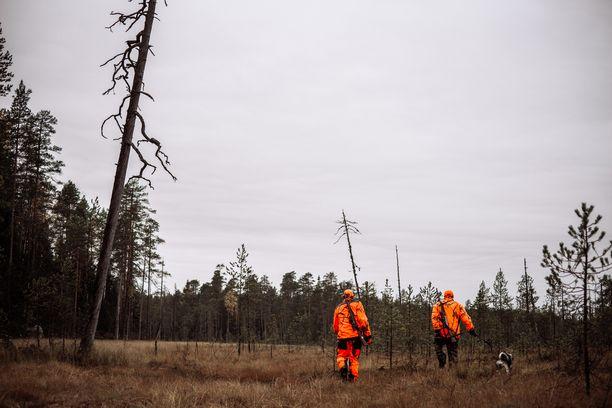Metsästäjäliitto on tekemässä tarkentavia esityksiä turvallisuusasioihin. Kuvituskuva.