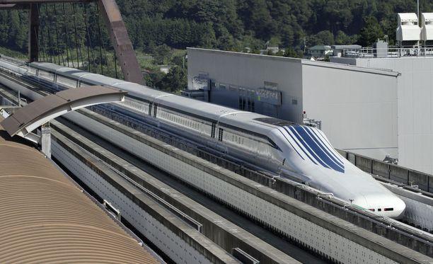 seksiä japanilainen juna
