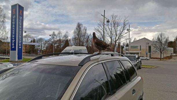 Se pystyi lentämään, sillä se lensi vaivattomasti Volvon katolle.