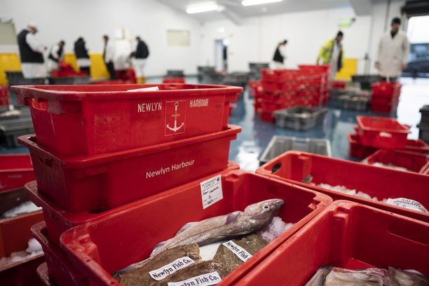 Brexit tulee vaikuttamaan merkittävästi Britannian kalatalouteen.