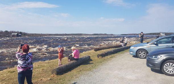 Tulvaturisteja Kukkolankoskella Torniossa sunnuntaina.