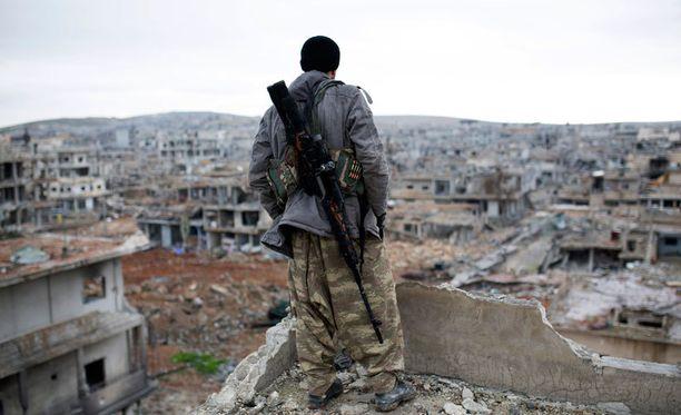 Kurditaistelijaa katsoo yli tuhoutuneen Kobanen kaupungin, jossa Isis koki murskatappion.