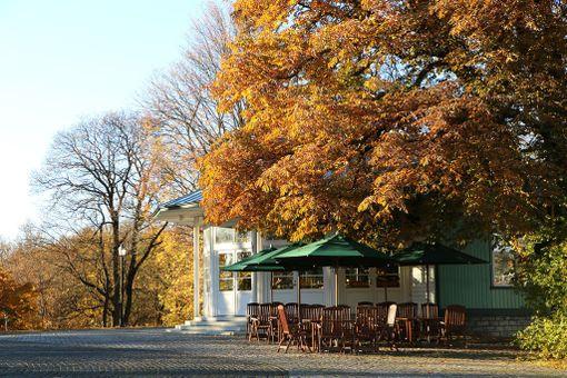 Vihreässä rakennuksessa sijaitseva Kõlakoda on viehättävä kahvila Tallinnan Harjumäellä. Harjumägi sijaitsee aivan vanhankaupungin kupeessa. Kahvilan pihalta avautuu hieno näköala Vapaudenaukiolle.