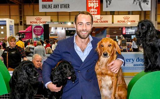 Herttuatar Catherinen James-veli perusti koiranruokafirman – sai apua masennukseensa nelijalkaiselta ystävältä