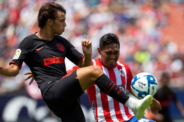 João Félix (vasemmalla) on iskenyt maaleja heti harjoituskaudella Atléticon paidassa.