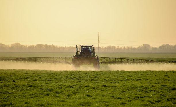 Glyfosaattipohjainen torjunta-aine on Monsanto-yhtymälle miljardibisnes. Kuvituskuva.