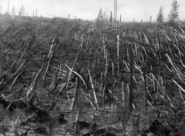Tämä kuva on otettu professori Leonid Kulikin tutkimusmatkalla alueelle vuonna 1938.