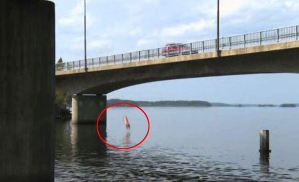 RAJUA Miss Suomi Viivi Pumpanen hyppäsi Biisonimafian kuvauksissa liikkuvasta autosta sillalta järveen.