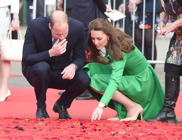 Catherine ja William tutkivat unikkoteosta.