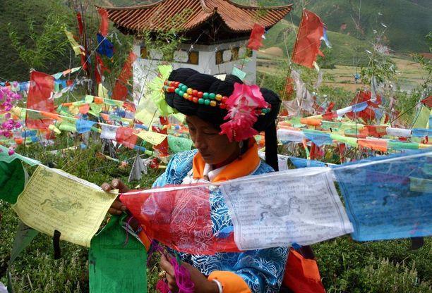 Mosuot harjoittavat luonnonuskontonsa rinnalla tiibetinbuddhalaisuutta, johon liittyviä rukouslippuja kuvan nainen käsittelee.