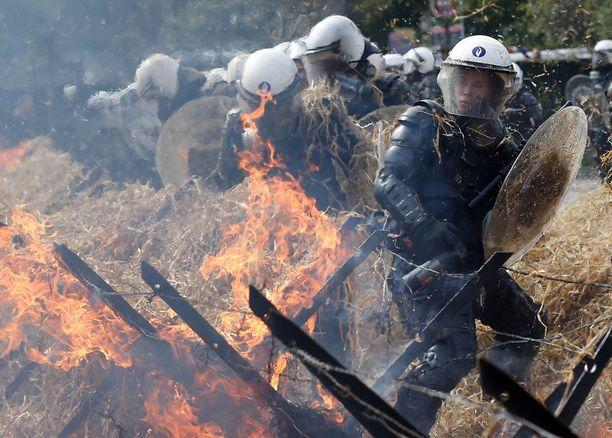 Poliisirivistöt joutuivat sammutustöihin maanviljelijöiden sytytettyä heinän tuleen.