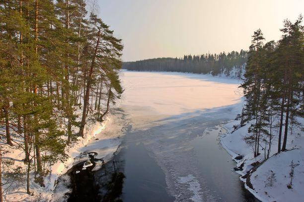 Talvinen näkymä Lapinsalmen riippusillalta Repoveden kansallispuistossa.