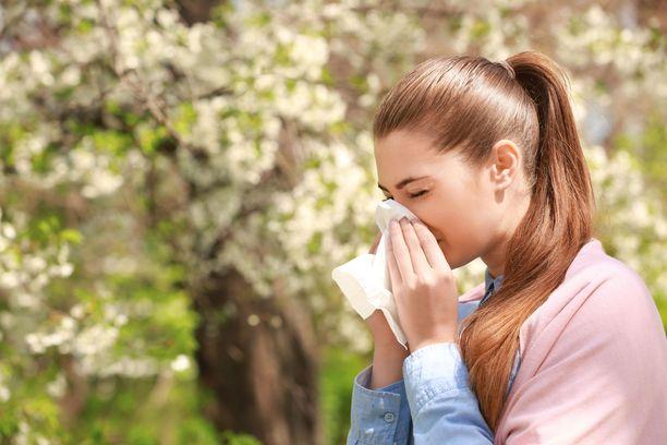 Ilmaston lämpeneminen ei tiedä hyvää allergisille.