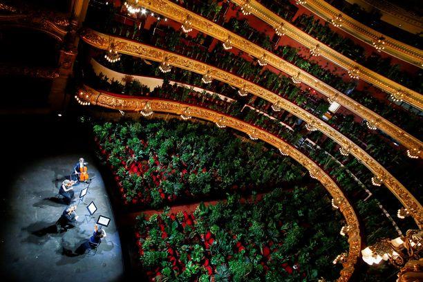 Yleisö seurasi hiljaa paikoillaan jousikvarteton esiintymistä.