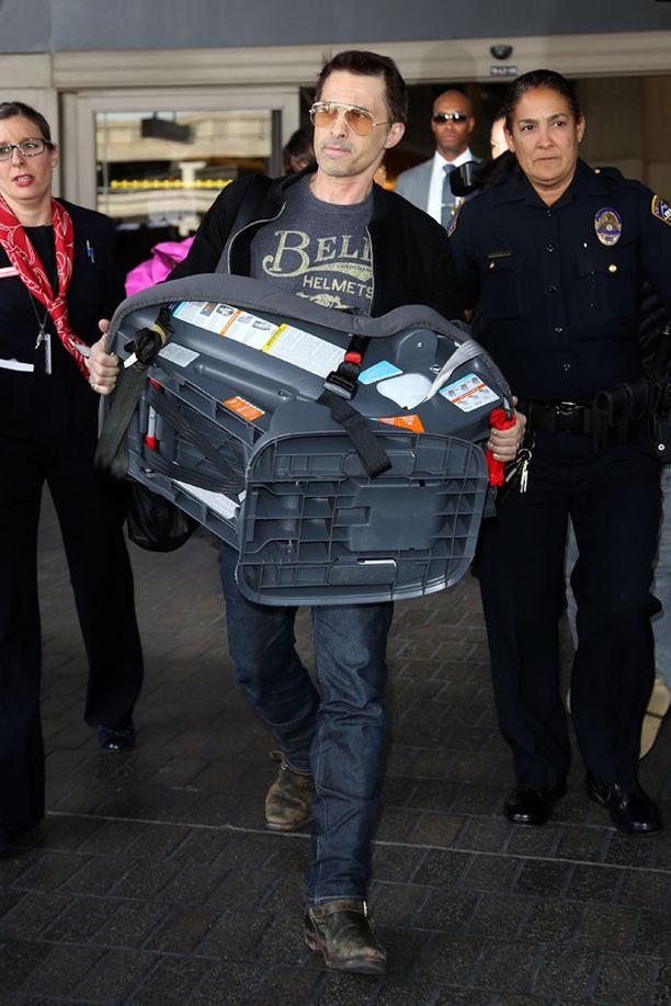 Olivier Martinez tönäisi lentokenttätyöntekijää tällä turvaistuimella.