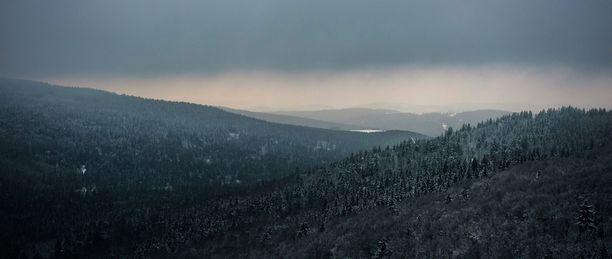 Lumi peittää puut Fichtel-vuorilla Saksassa.