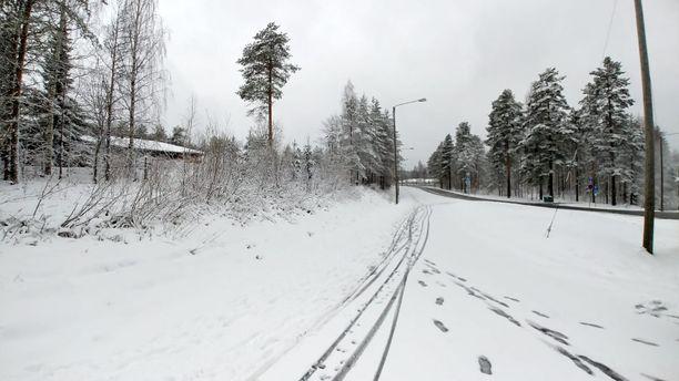 Iltalehden lukija tallensi talvisen näyn kuviin tänään aamulla Kontiolahdella.