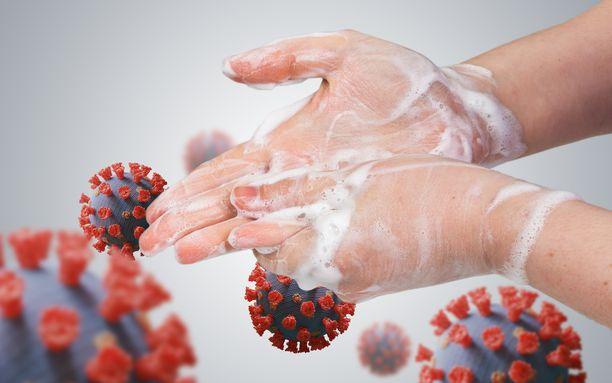Käsien kautta koronavirus voi siirtyä elimistöön ja saada aikaan sairastumisen.
