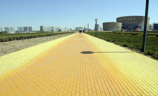 Tsingis Khanin aukion läpi kulkee kaunis keltainen tie.