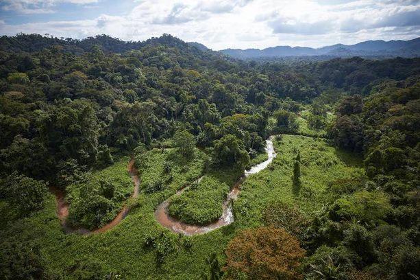 Mosquitian vaikeakulkuisessa viidakossa ovat maya-intiaanien naapurustossa eläneen muinaisen sivilisaation rauniot.