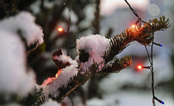 Valkeaa joulua uskaltaa jo odottaa suurimpaan osaan Suomea.