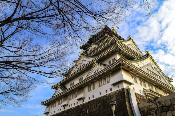 Torstaina otetut kuvat osoittavat, ettei kirsikkapuiden kukinta ole vielä alkanut Osakan linnan ympäristössä.