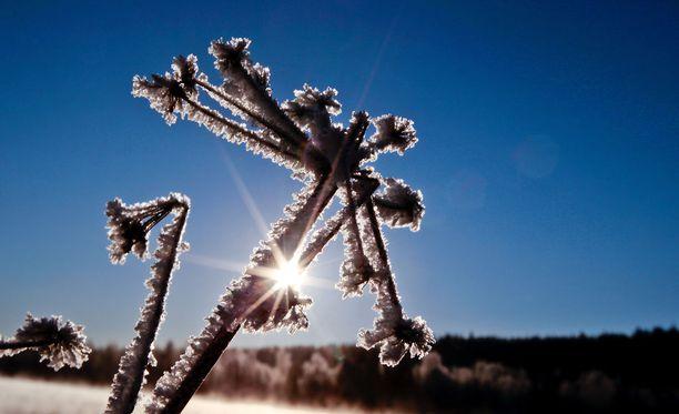 Lapissa lämpötila on noin 35 astetta kylmempi kuin Etelä-Suomessa.