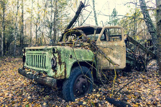 Hylätyt ajoneuvot ruostuvat puhki metsän kasvaessa niiden ympärille.
