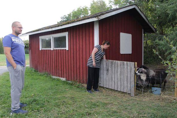 Perheellä oli tulipalon sattuessa useita eläimiä. Lampaat selvisivät tulipalosta. Ne olivat uuden talon rakentamisen ajan sijoitettuna muualle ja palasivat kotitilalle tänä kesänä.