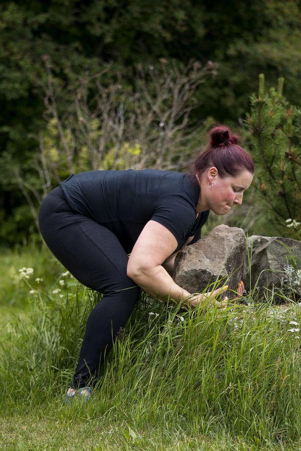 """Atlas-kivien nostaminen on kisalaji, jossa käsivarsiin hierotaan lipsumisen estämiseksi pihkaa. Tämä oman pihan 40-kiloisen """"pikkukiven"""" nostaminen ei moista varmistusta tarvinnut."""