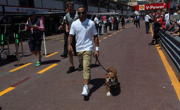 Roscoe (oik.) on jo tuttu näky F1-varikolla.