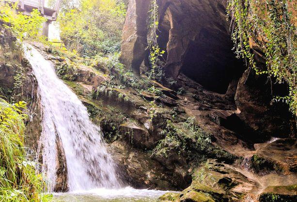 La Palma on Kanariansaarista vehrein.