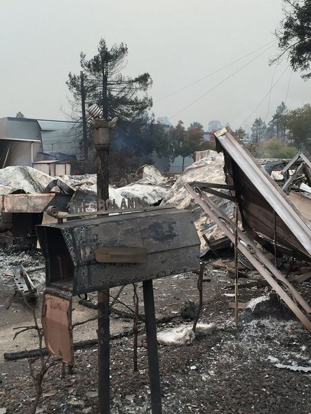 Paula Gastonin ystävän ottama kuva Santa Rosasta, jossa tuli tuhosi useita taloja ja autoja.