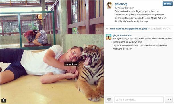 Tjäreborg poisti tiikerikuvan pian palautteen perusteella.