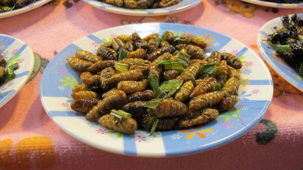 Hyönteisiä voi syödä pian ihan virallisestikin Suomessa. Kuvan höynteisannos kuvattu Thaimaassa.