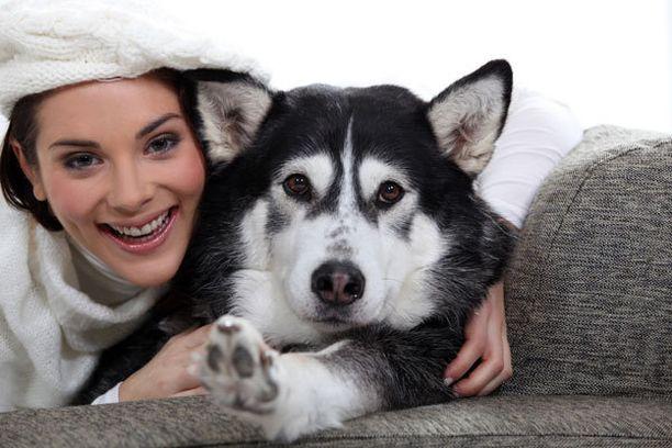Koiran omistajat kokevat itsensä onnellisemmiksi.