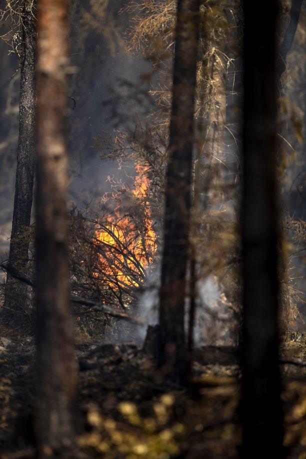 Vaikka palo on saatu rajattua, liekkejä alueella näkyi torstaina edelleen.