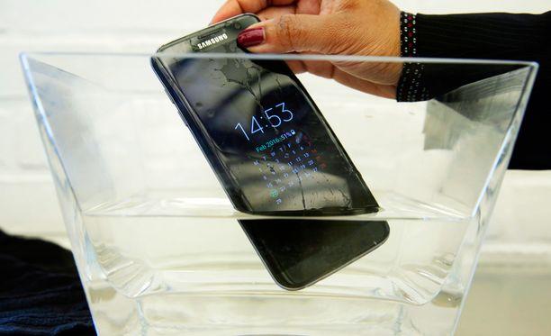 Kuvassa oleva Samsungin Galaxy S7 Edge on läpäissyt kaikki upotustestit, mutta sen urheilullinen versio S7 Active on hajonnut kuluttajajärjestön testissä.