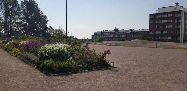 Katri Valan puistolla on kyseenalainen maine ruiskupuistona.