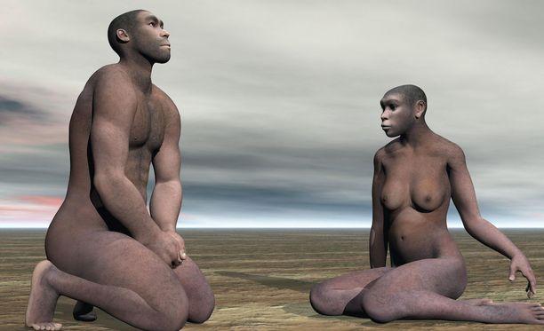 Neandertalilaiset olivat mestareita luonnon yrttien käyttämisessä.