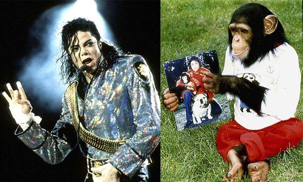 Michael Jackson väitetään pahoinpidelleen simpanssiaan.