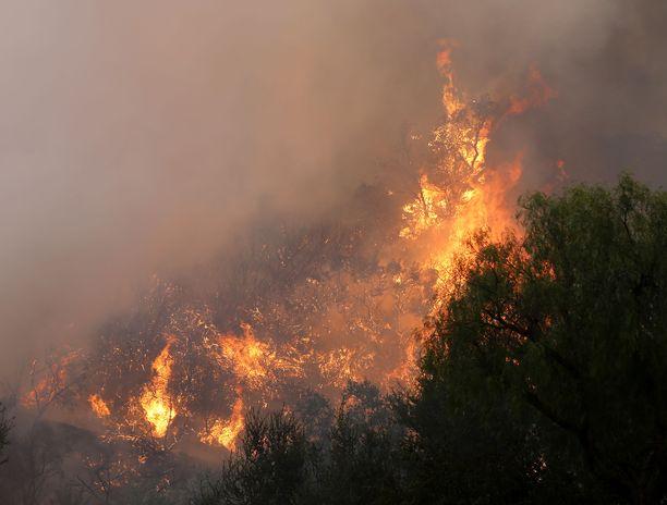 Kaliforniassa riehui lauantaina yhteensä 16 maastopaloa. Kuiva maasto ja voimakkaat tuulet levittävät paloja nopeasti.